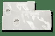 Continuous Belt Sealer